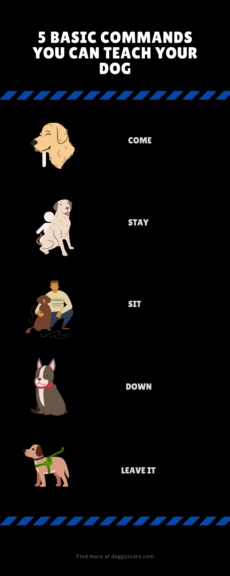 5 Basic commands you can teach your dog